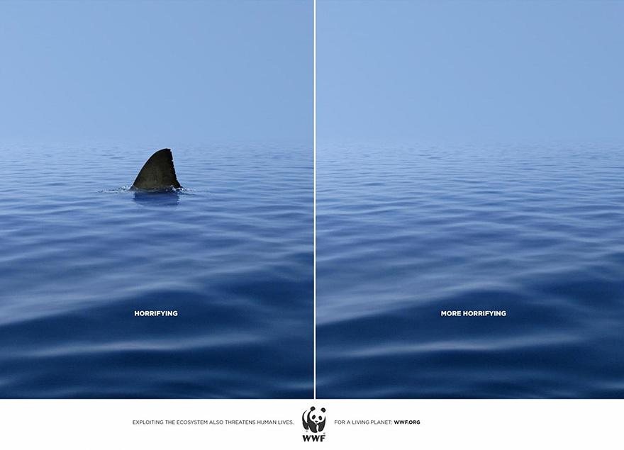 изчезващи акули